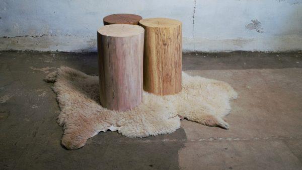 Træstubbe egetræ